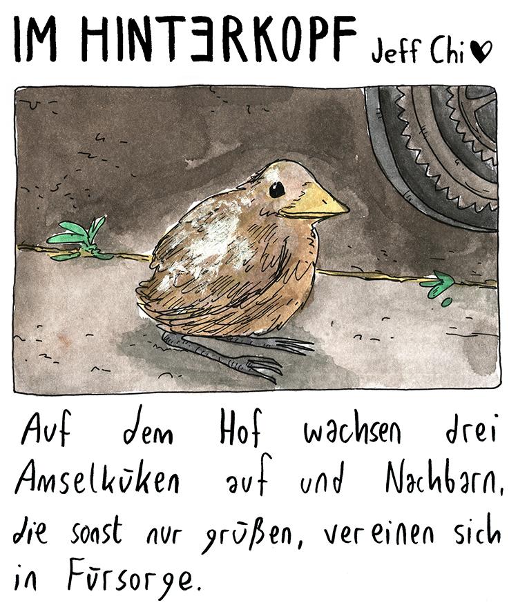 im_hinterkopf_007